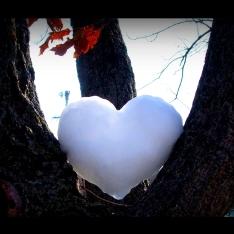 heartboarder2