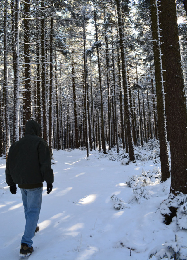 man in winter woods